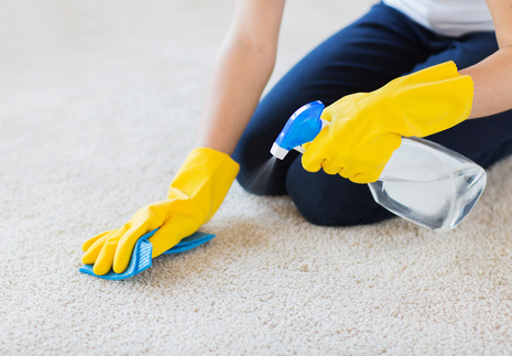 Redcliffe peninsula carpet cleaner